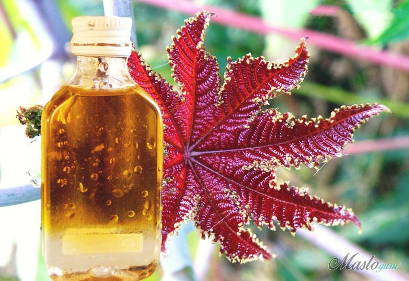 Касторовое масло при геморрое: помощь в лечении 14-1