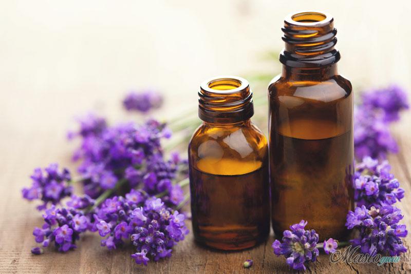 Свойства и применение эфирного масла лаванды 17-2