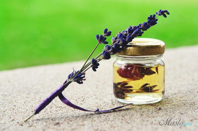 Эфирное лавандовое масло для волос – свойства, применение и противопоказания 18-5